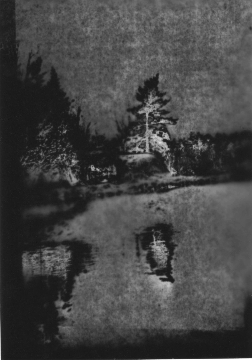 Lone Pine .sm